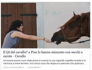 articolo cavallo magazine 2